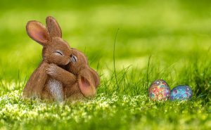 easter bunnies cuddling in grass