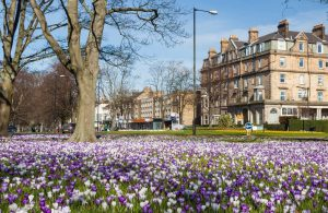 things to do in Harrogate on a Sunday