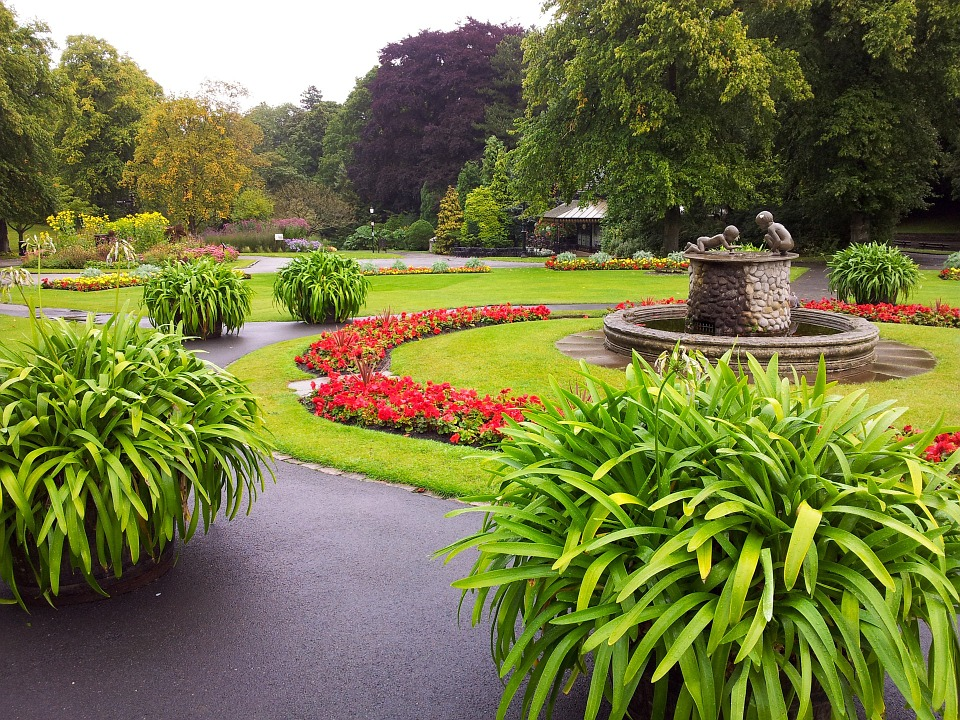 Flowers in bloom at Harrogate Valley Gardens